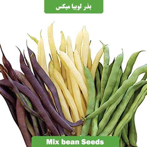 بذر لوبیا میکس