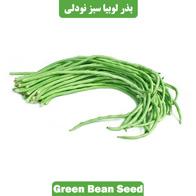 بذر لوبیا سبز نودلی