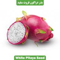 بذر دراگون فروت سفید