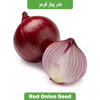 بذر پیاز قرمز