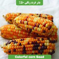 بذر ذرت رنگی %50
