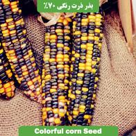 بذر ذرت رنگی %70