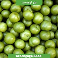 بذر گوجه سبز
