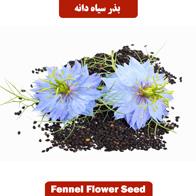 بذر سیاهدانه