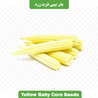 بذر بیبی ذرت زرد