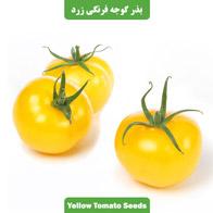 بذر گوجه فرنگی زرد بوته ای