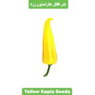 بذر فلفل چارلستون زرد