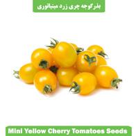 بذر گوجه چری زرد مینیاتوری