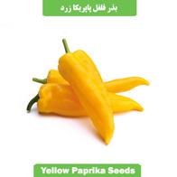 بذر فلفل پاپریکا زرد