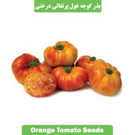 بذر گوجه غول پرتغالی درختی