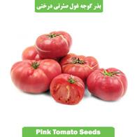 بذر گوجه غول صورتی درختی