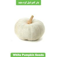 بذر کدو تنبل گرد سفید