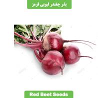بذر چغندر لبویی قرمز