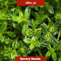 بذر مشکک
