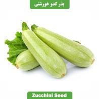 بذر کدو خورشتی