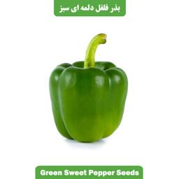 بذر فلفل دلمه ای سبز
