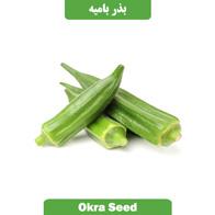 بذر بامیه سبز