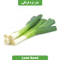 بذر تره فرنگی